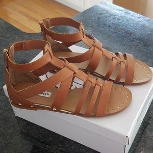Steve Madden gladiator sandals 8M